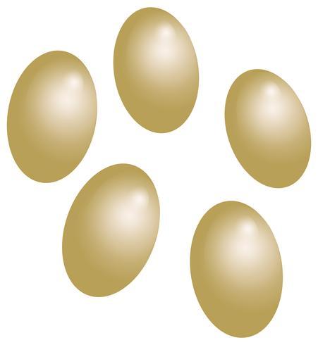 mjölmorm ägg vit bakgrund