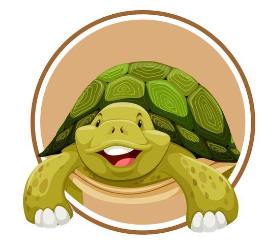 Tartaruga sul modello di cerchio