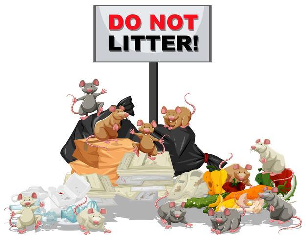 Ratti alla ricerca di cibo nella pila di rifiuti vettore