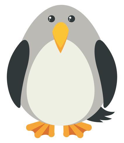 Pájaro gris con cara feliz