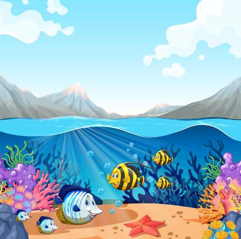 beautiful underwater sea life vector