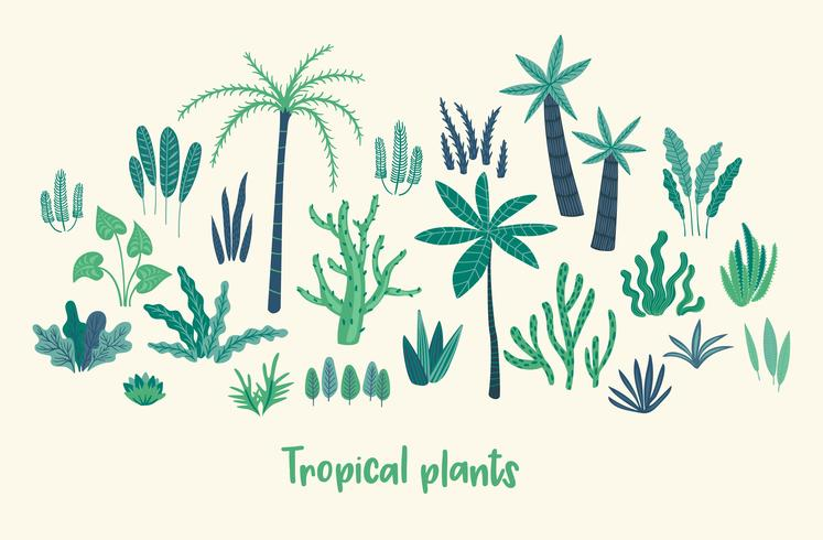 Insieme di vettore delle piante tropicali astratte. Elementi di design