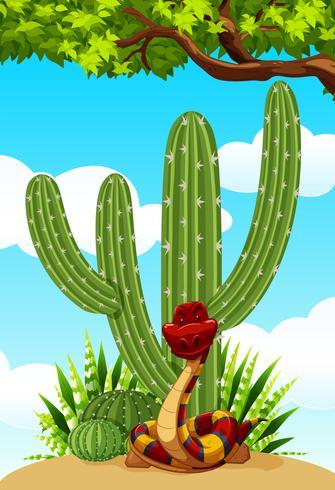Pianta di cactus e serpente sul terreno