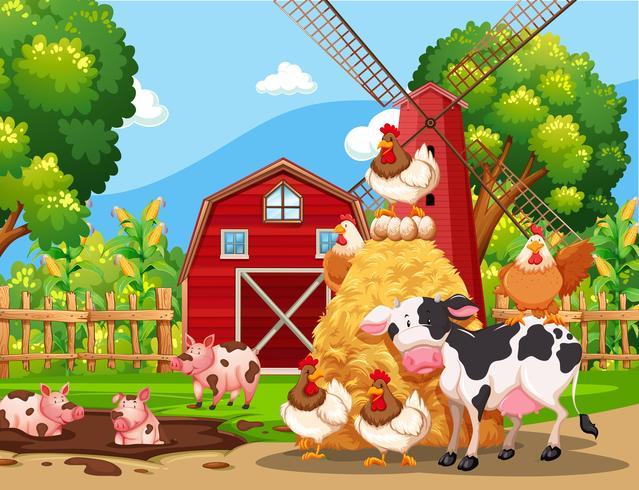 Escena de la granja con animales.