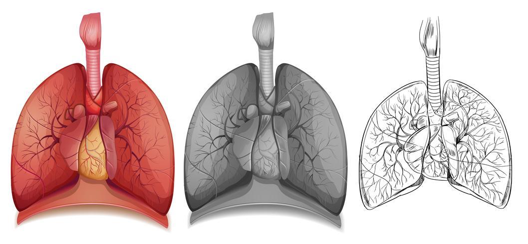 1Doodle-karakter voor menselijke longen