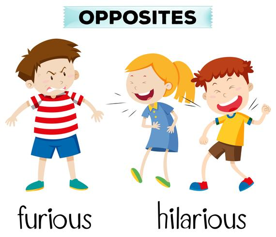 Opostos furiosos e hilários