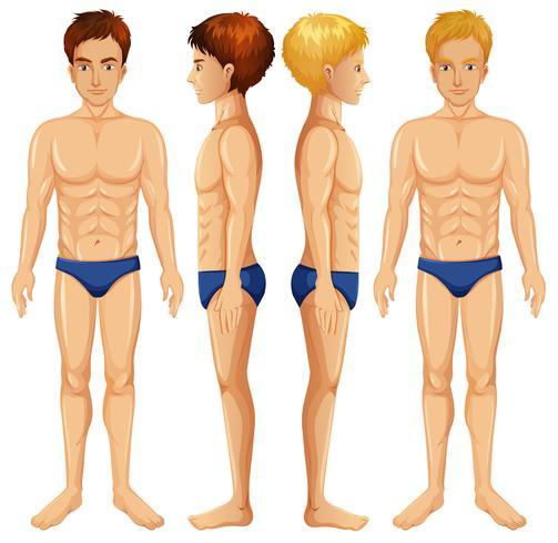 Un conjunto de cuerpo masculino