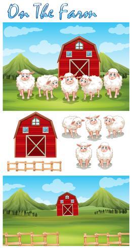 Tema de la granja con ovejas en la granja