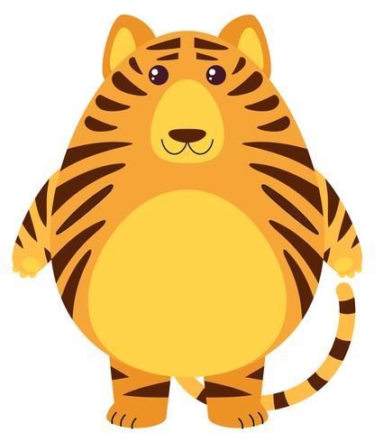 Tiger mit rundem Körper