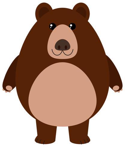 Urso pardo, sorrindo, branco, fundo