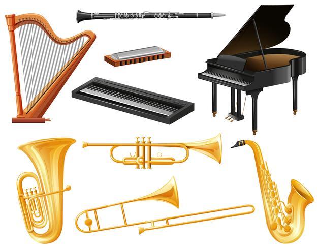 Diferentes tipos de instrumentos musicales. vector