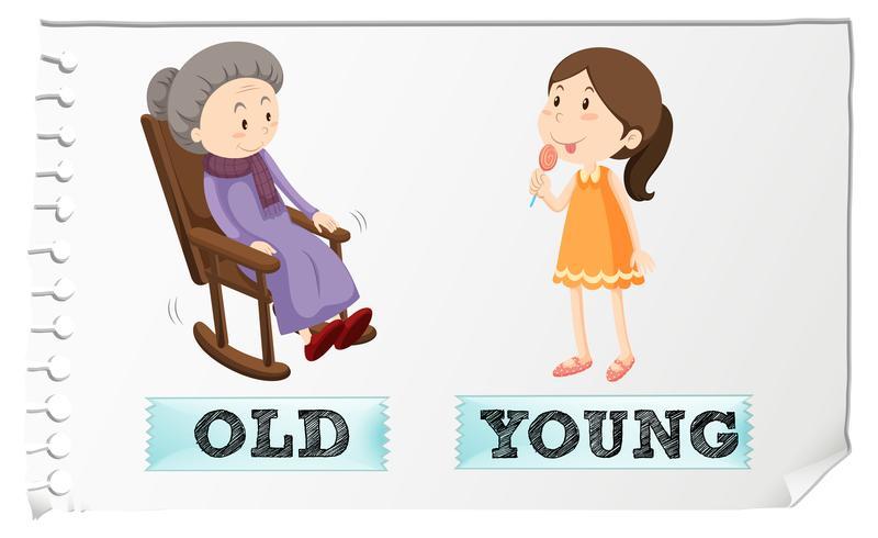 Adjetivos opuestos viejos y jóvenes.