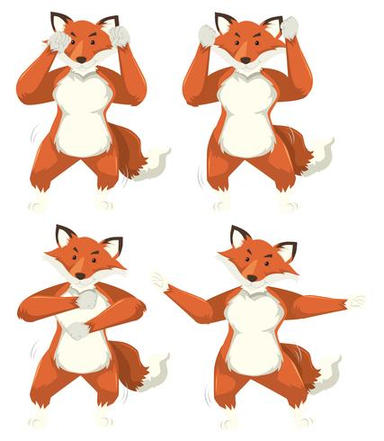 Conjunto de movimentos de dança de raposa