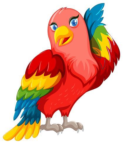 Papagaio lindo com asas coloridas