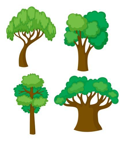 Bomen in vier verschillende vormen