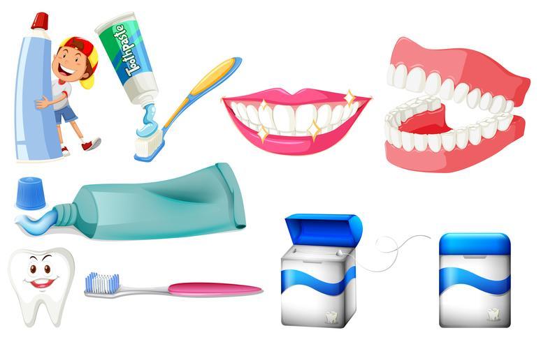 Conjunto dental con niño y dientes limpios.