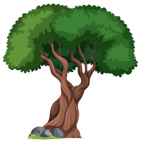 Ett isolerat träd i naturbakgrund