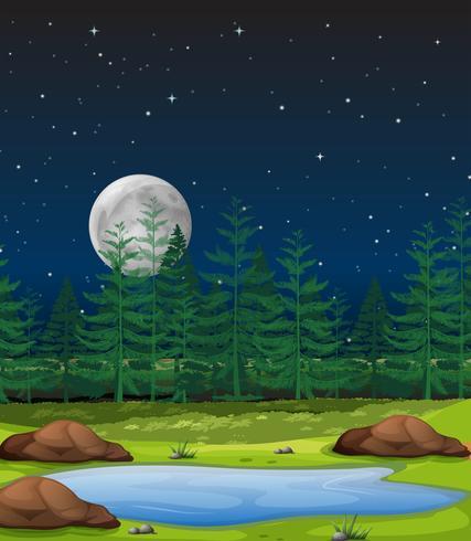 Scène de forêt dans la nuit