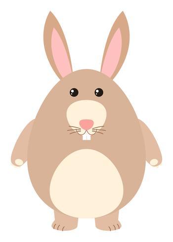 Gullig kanin med brun päls
