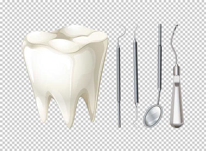 Zahn und zahnmedizinische Ausrüstungen