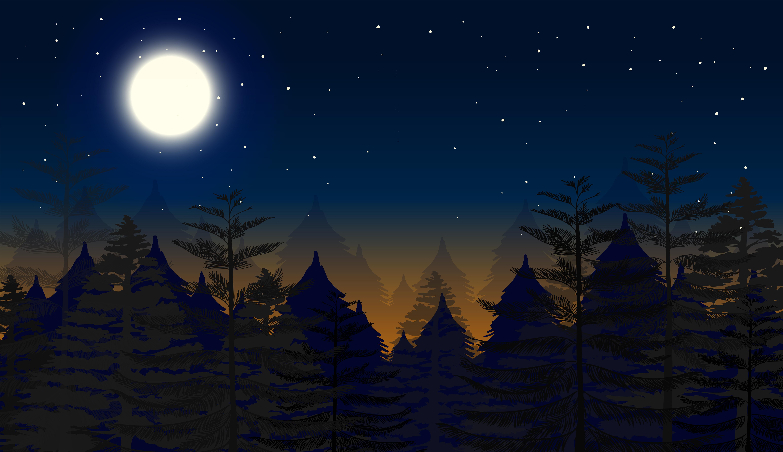 Night forest scene bac...