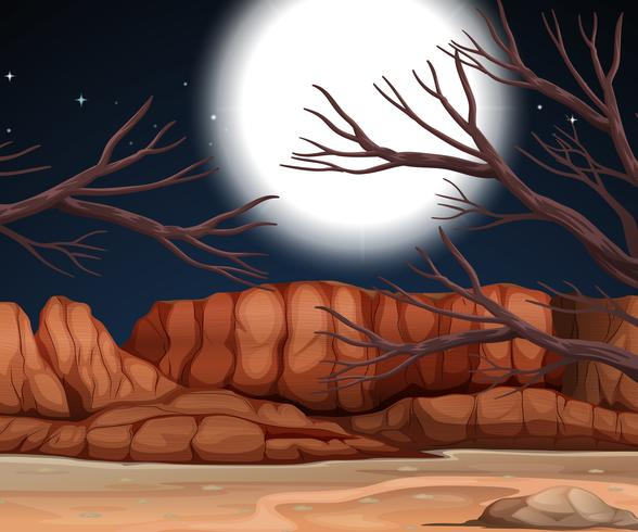 Escena del desierto en la noche