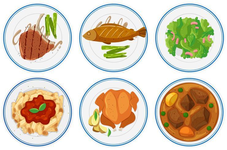 Diferentes tipos de comida en los platos. vector