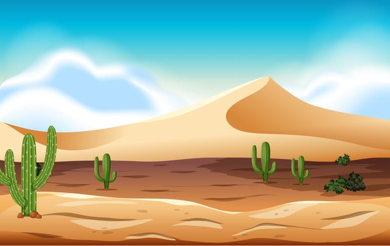 desert with dunes and cactus