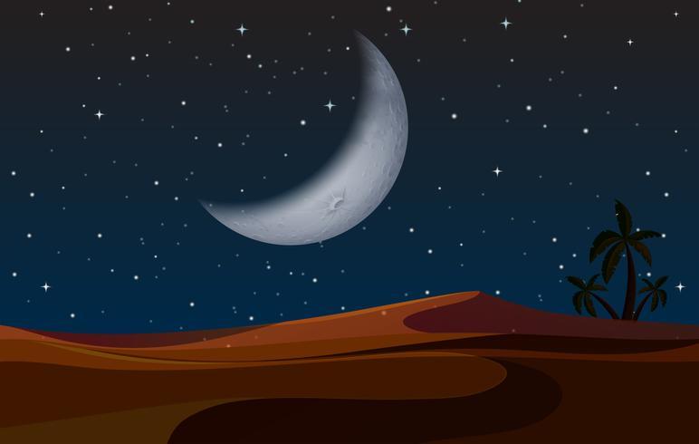 Een woestijnlandschap in de nacht