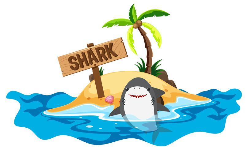 Tubarão nadando no mar