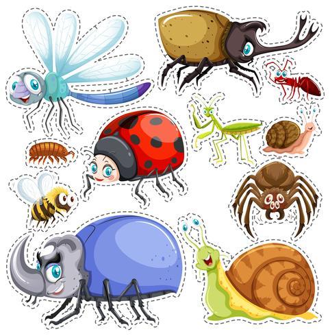 Conjunto de pegatinas de muchos insectos.