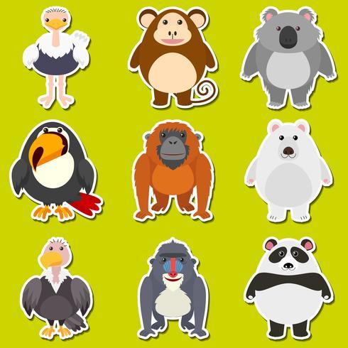 Design adesivo per simpatici animali