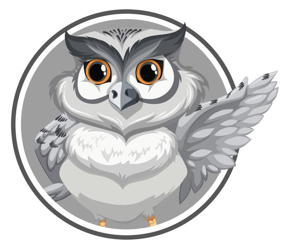 Owl on circle template