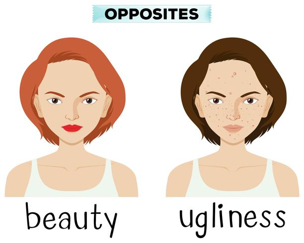 Palabras opuestas para la belleza y la fealdad.