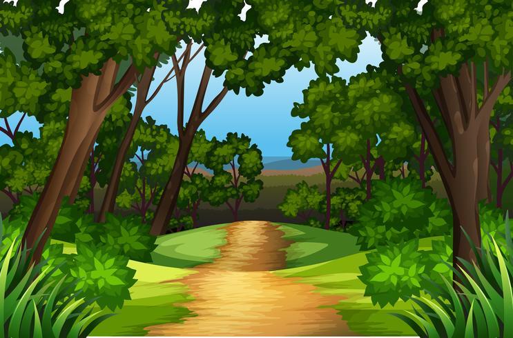 Ett naturvägslandskap