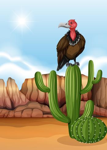 Escena con pájaro buitre en planta de cactus