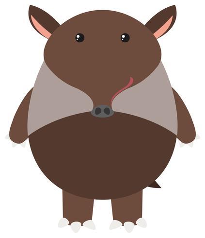 Brun tapir på vit bakgrund