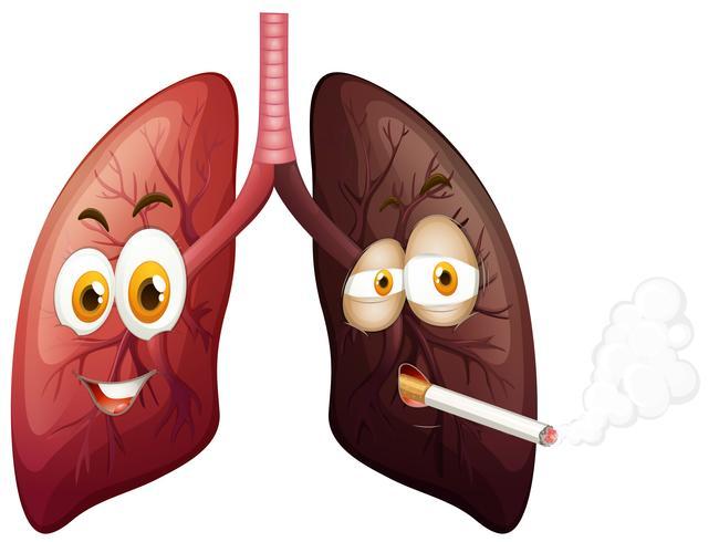 Illustration de poumon heureux et poumon triste