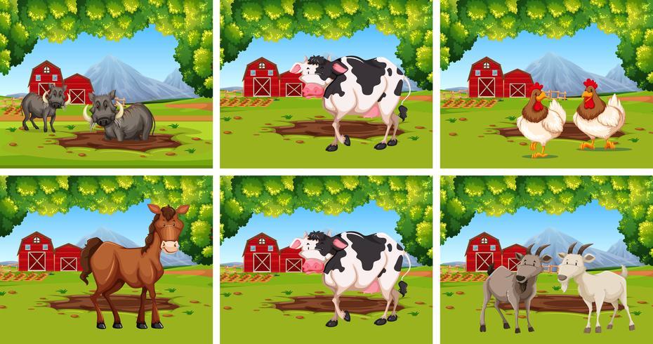 Ensemble d'animaux dans les fermes
