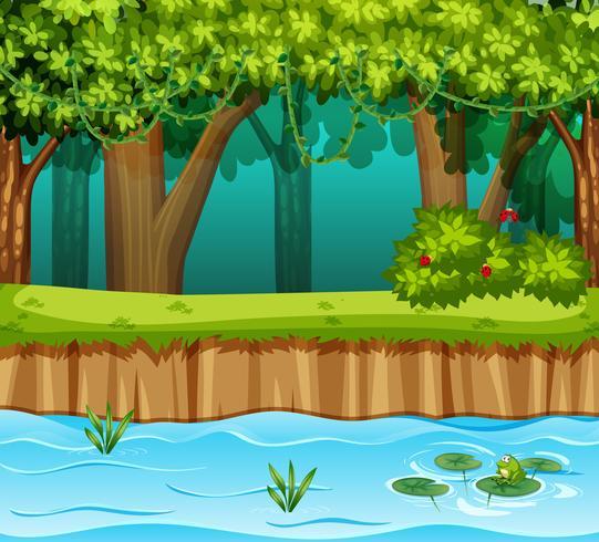 skog med flodscen