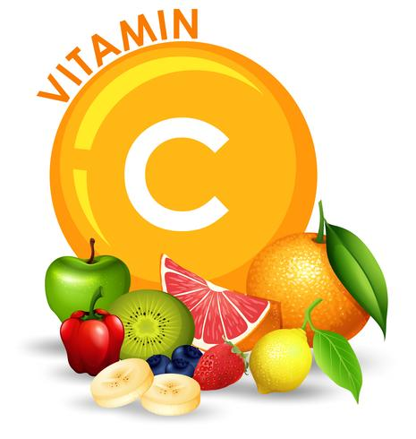 Ein Satz von Vitamin C-Früchten