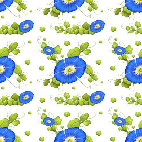 Fond transparent avec des fleurs bleues gloire du matin