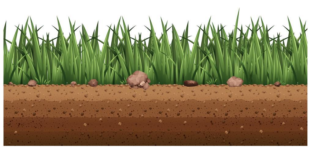 Sömlös bakgrund med gräs på marken