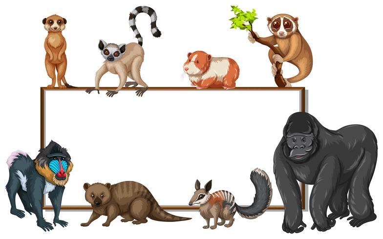 Board template with wild animals