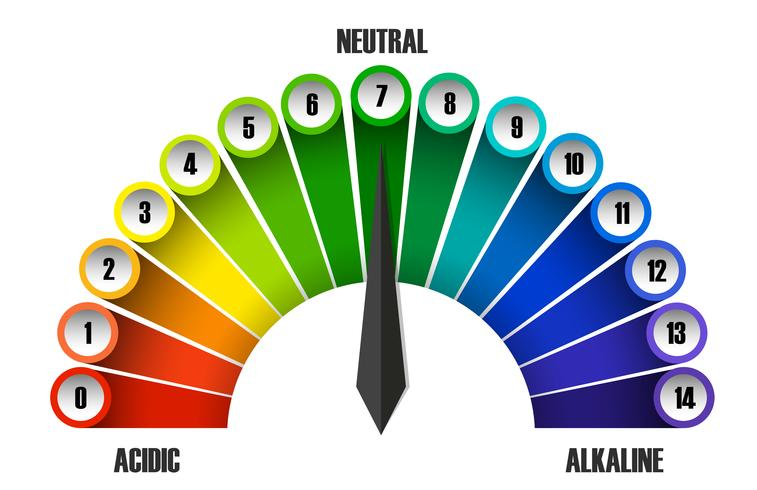 A pH scale on white background vector