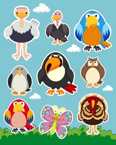 Aufkleber mit verschiedenen Vogelarten eingestellt