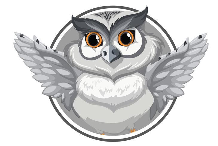 En grå owl banner