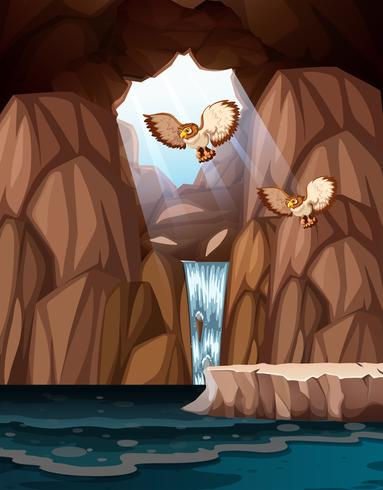Cave with waterfalls and owls