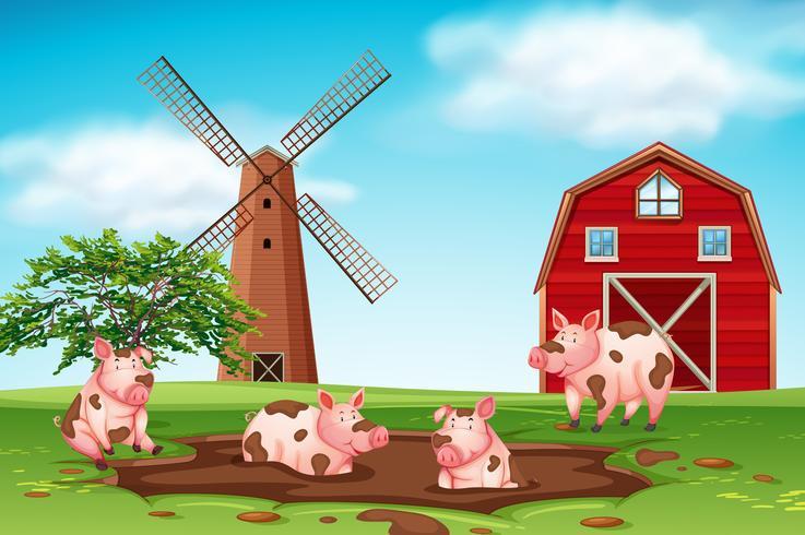 Cerdos jugando en la escena de la granja de barro vector