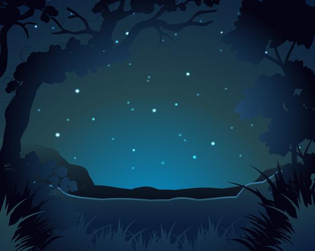 Forest scene at night
